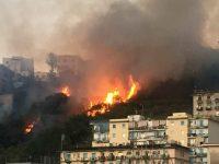 """Roghi: L'area nord continua a bruciare. Che fine ha fatto il protocollo d'intesa """"Comuni in Azione""""?"""