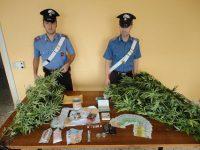Nascondeva droga in casa, arrestato 28enne del Vomero