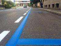 Strisce blu: botta e risposta a distanza tra l'Assessore Esposito e la consigliera del M5S Vignati