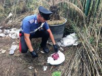 Arzano: ritrovata lampada rubata dalla chiesa di Sant'Agrippino, indagano i carabinieri