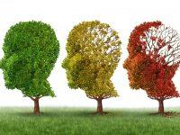 XXIV Giornata celebrativa degli studi circa l'Alzheimer al Centro Geriatrico Frullone Asl Na 1