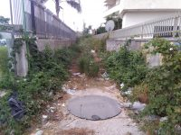"""Via Pietro Nenni, arteria di Casoria sporca e piena di erbacce. I residenti: """"Non viene ripulita da un anno!"""""""