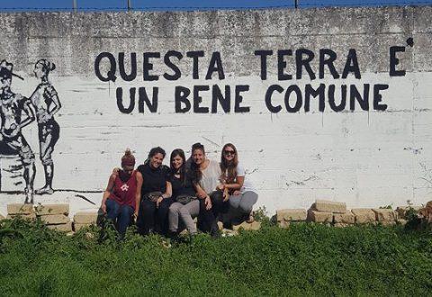 Terranostra non si arrende: ecco le nuove iniziative in cantiere e lo sfogo diffuso attraverso facebook