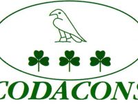 Riceviamo e pubblichiamo: il Codacons Casoria chiede chiarimenti al sindaco