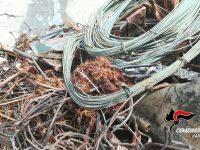 Cavi elettrici bruciati scoperti in una ditta dai carabinieri forestali, 4 denunciati