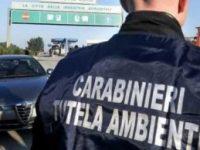 Casoria: sorpresi a sversare 3mila mc di rifiuti, fuggono e poi aggrediscono i carabinieri. arrestati 2 fratelli