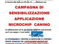Applicazione del microchip canino: la campagna di sensibilizzazione organizzata dalla Pro Loco Insieme per la Città di Casoria