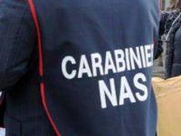 Intervento del N.A.S. a Casoria, sequestrati 70 chili di prodotti alimentari