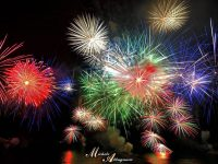 Arrivano dal canada i fuochi d'artificio silenziosi per tutelare gli animali