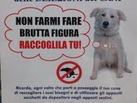 Raccolta delle deiezioni dei cani. La campagna promossa dal Comune di Casoria