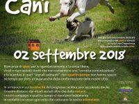 """Casoria e la carenza degli spazi verdi: AMO Casoria costretta ad annullare l'evento """"una domenica da cani""""."""
