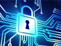 I crimini informatici: le frodi online