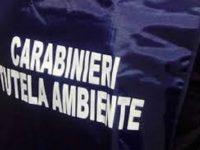 Sversamento selvaggio di rifiuti edili,carabinieri del N.O.E. denunciano due imprenditori, uno è di Casoria