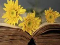 Napoli: il fioraio che regala libri