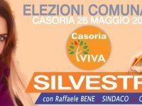 Riceviamo e pubblichiamo. Politica, elezioni maggio 2019, Susy Silvestri : la politica come vocazione