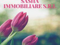 Sasha Immobiliare s.r.l.. L'elenco di servizi di cui l'azienda dispone!