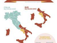 +2,5% E 187 mila tonnellate di carta e cartone raccolte. Campania prima regione del sud Italia per volumi recuperati