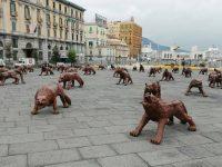 Cosa si nasconde dietro l'invasione dei lupi a Napoli?