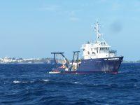 SZN, ricerca e Intelligenza artificiale: dati negativi per relazione tra aumento del riscaldamento globale e produzione di plancton.