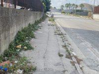 Cittadini stanchi delle precarie condizioni igieniche del quartiere Castagna. Aiuole alte mezzo metro e cocci di vetro per strada
